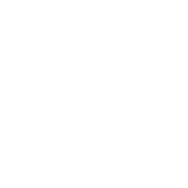 Torch icon desktop